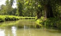 Marais Poitevin river trip